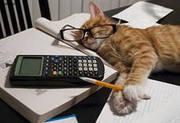 Помощник бухгалтера в оптовый офис.